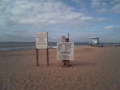 Dog_beach_1