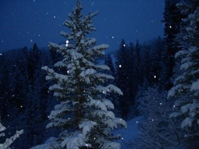 Snow_falls